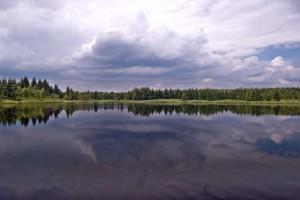 Starý rybník u Nového Domu