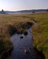 řeka Rolava u Jelení