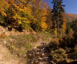 Bezručovovo údolí