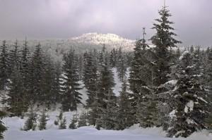 pohled na Jelení horu