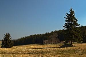 Königsmühle