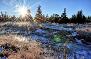 Novoveské rašeliniště
