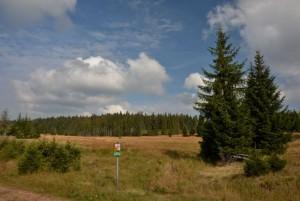 Krušnohorská vrchoviště
