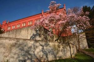 zámek v Klášterci