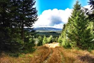 Cesta mezi prvním vrcholem Na vrcholu a Vysokou Sečí