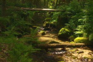 Eliášův potok