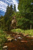Načetínské údolí